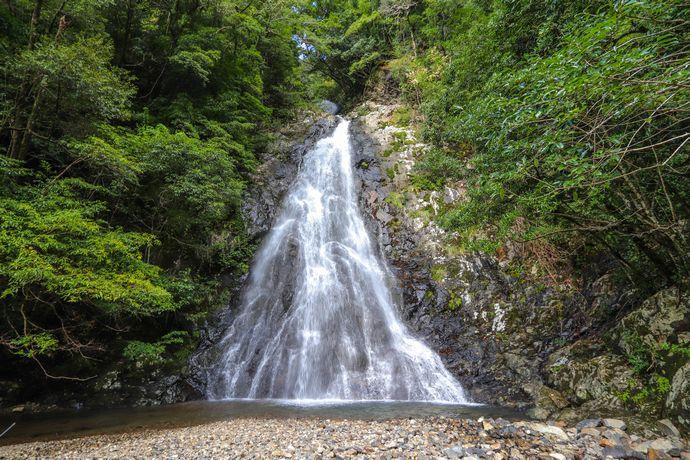 【南九州市】八瀬尾の滝:滝巡りとしては行きやすい?観光地化されていない川辺の滝