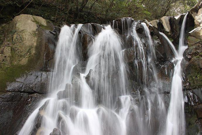 ふずん滝:犬迫の竹藪へ踏み込むと驚きの光景が