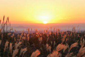 【霧島市福山町】狐ヶ丘高原:西郷どんのロケでも使われた高原からみる景色
