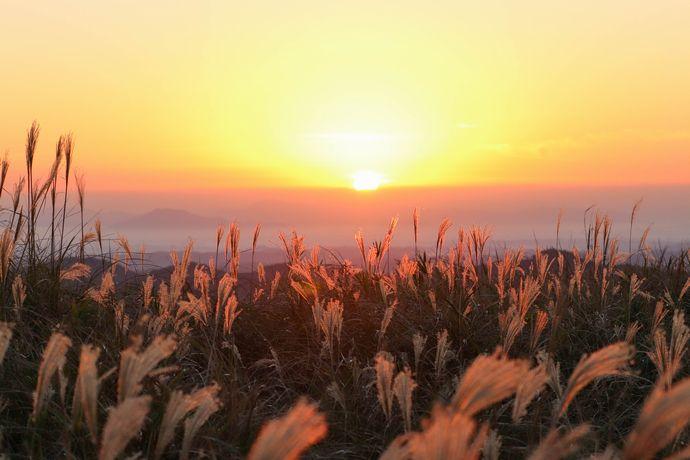 狐ヶ丘高原:行き方ガイド付き!西郷どんのロケでも使われた高原からみる景色【霧島市福山町】