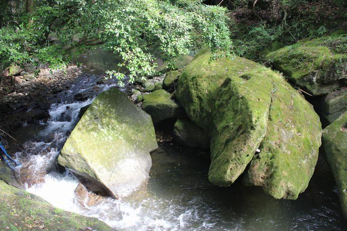 【日置市吹上町】藤木場淵:巨大岩が集まった沢で涼をとろう!