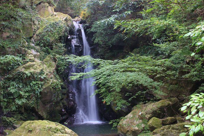 紫尾山の滝