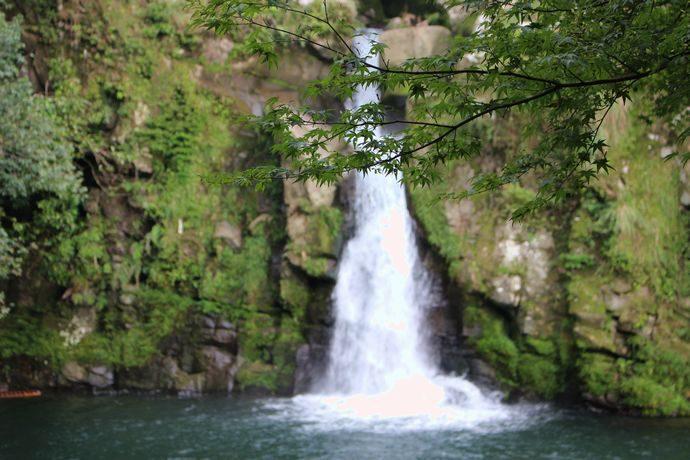 【さつま町】観音滝公園:四季折々の楽しみがある自然満載の公園
