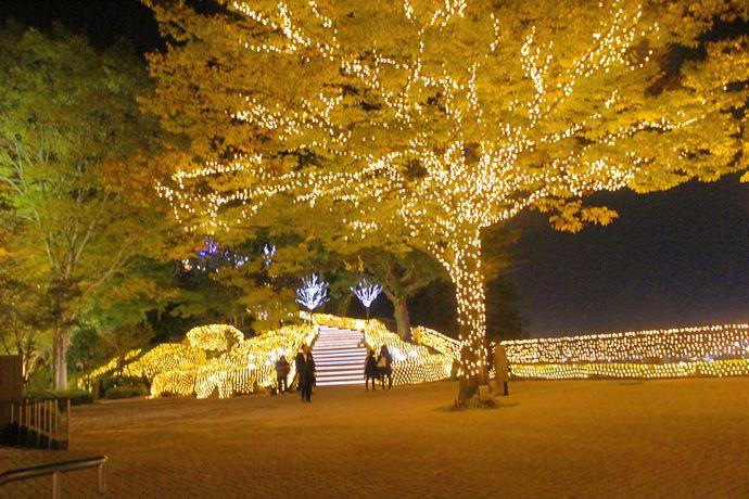 城山クリスマスイルミネーション