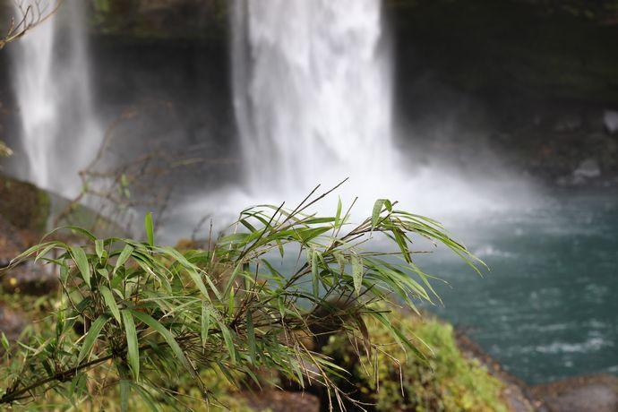 【霧島市】犬飼の滝:坂本龍馬も訪れた「新かごしま百景」第一位の滝