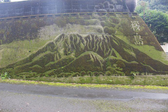 小山田町古園集落の苔画「維新ロード」こそ 本物のジャパニーズストリートアートだ!!