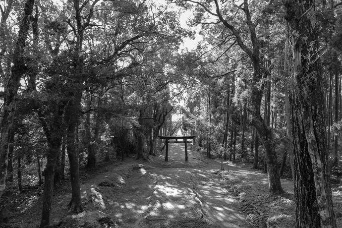 島津日新公修行の地「海蔵院」跡と伊作太鼓踊りが奉納される南方神社