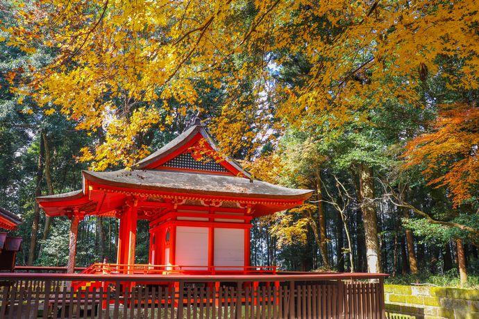 【伊佐市】郡山八幡神社:最古の「焼酎」の文字が発見された国指定重要文化財
