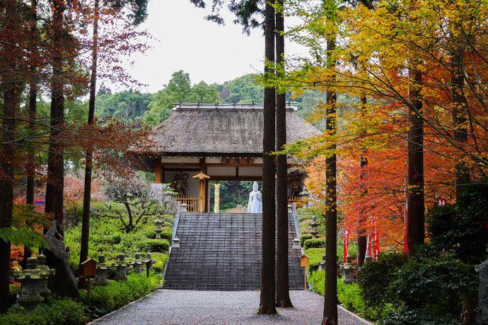 【指宿市】不動山青隆寺:日本人として心が落ち着く空気がここにある!