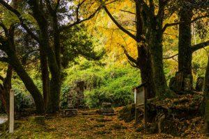 鹿児島市吉田麓の史跡へ!春と秋の散策