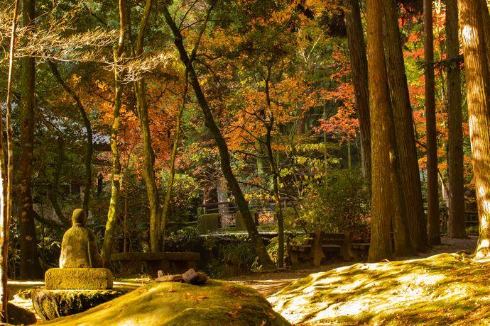 慈眼寺公園(慈眼寺跡):飛鳥時代に創建され初代薩摩藩主の菩提寺にもなった薩摩三名刹のひとつ