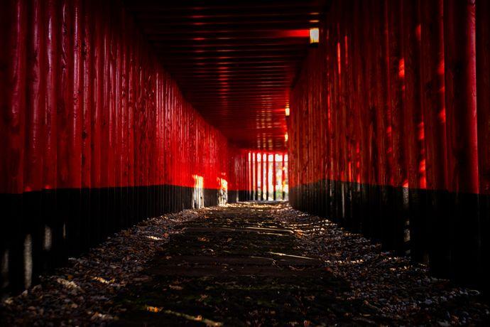 神徳稲荷神社の千本鳥居
