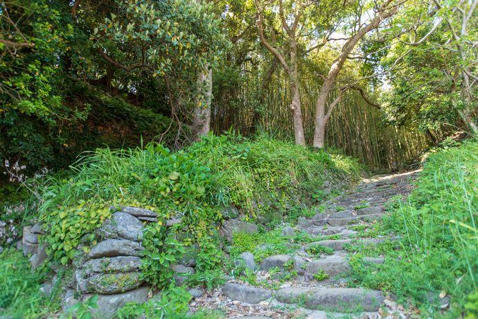 長島にある堂崎城跡に残る石段
