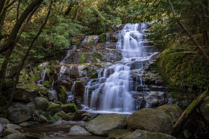 清純の滝:肝付町の森の中にある観光地化されていない滝へ