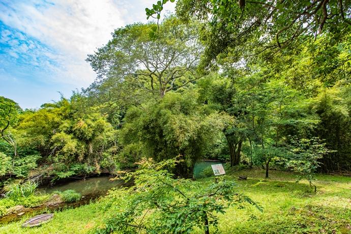 香梅ヶ渕と玉繁寺跡の滝:喜入旧麓地区に残る自然景観を訪ねてみた