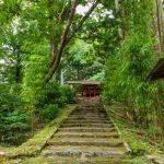 喜入 南方神社:映画のロケ地にもなった創建500年以上の森の神社へ