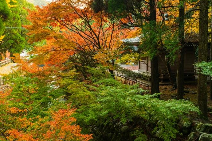 冠岳の紅葉を見に行ったら和の雰囲気満載で最高だった【いちき串木野市】