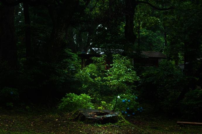 雨の日に訪ねたくなる神秘的な喜入南方神社