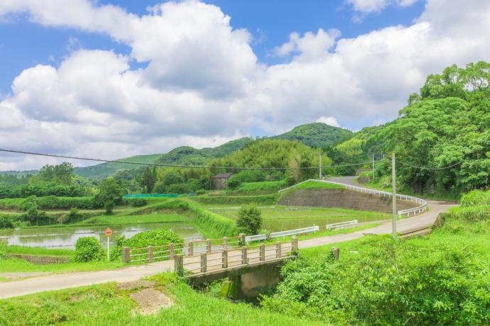 岩下の棚田:日本の夏の原風景を求めて【薩摩川内市 入来町】