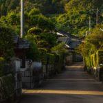 日本遺産 蒲生麓の風景と日本一の巨樹を訪ねて
