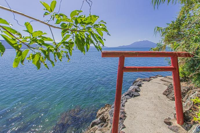 若尊神社:桜島をのぞむ絶景と神話に残る地【霧島市】