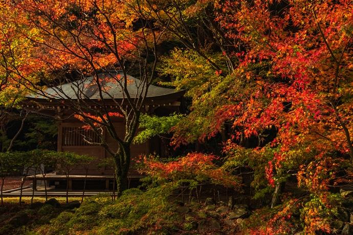 冠岳2020年の紅葉はお堂の周囲がやはり美しかった