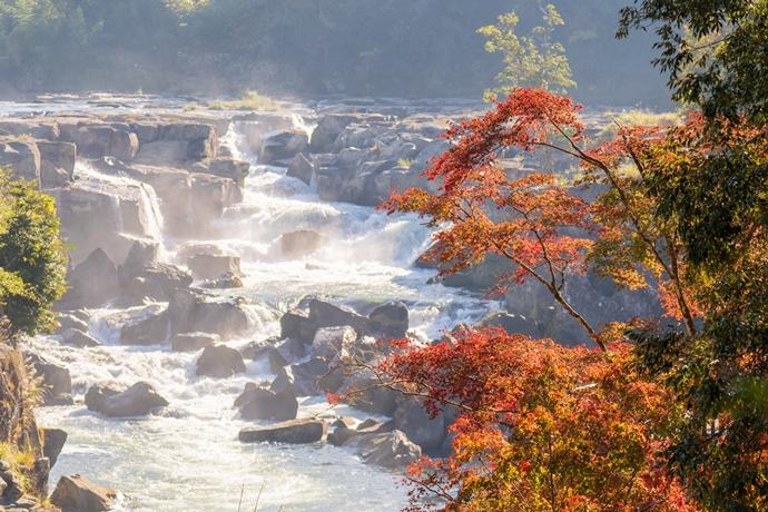 曽木の滝の紅葉2020年は今が旬!11月末じゃ遅い!かも…【伊佐市大口】